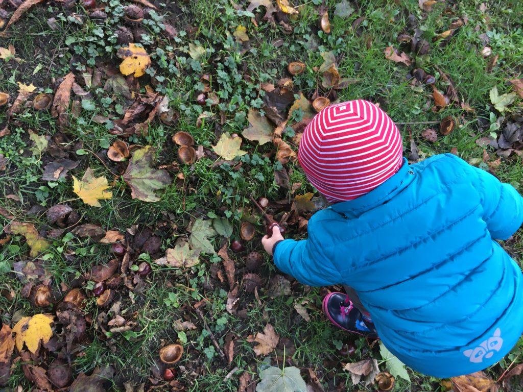Herbst mit Kindern - Kastanien sammeln
