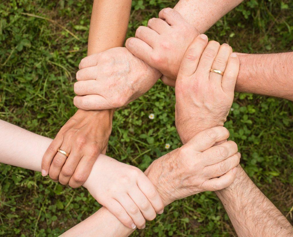 Artgerecht leben - Gemeinschaft